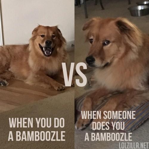 bamboozle-vs.jpg
