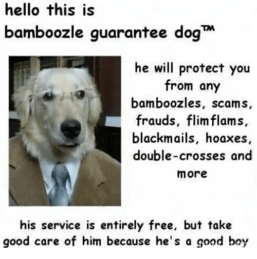 hello-this-is-bamboozle-guarantee-dog-he-will-protect-you-29992282.png