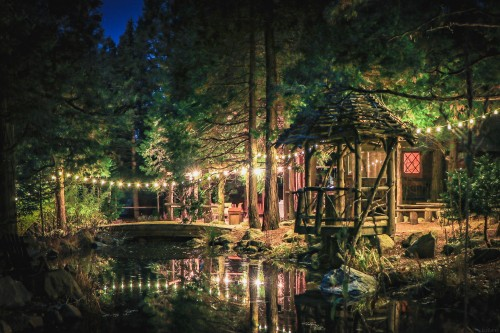wedding-venue-in-an-enchanted-forest.jpg