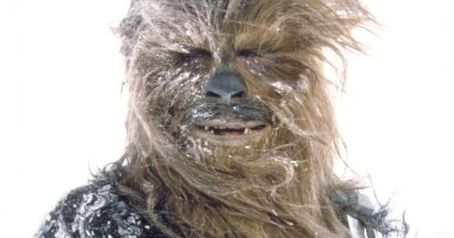 Chewie-Chewbacca.jpg