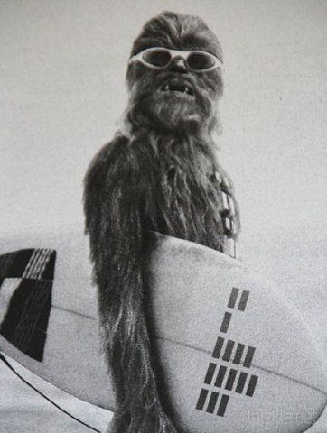 Chewbacca-Surf.jpg